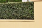 Acacia Gardens Decorative fencing 30